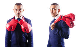 The handsome businessman with boxing gloves Stock Image