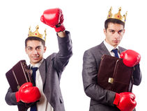The handsome businessman with boxing gloves Royalty Free Stock Photos