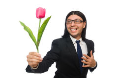 Handsome businessman with flower isolated on white Stock Images