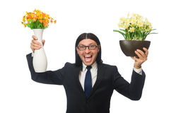Handsome businessman with flower pot isolated on Royalty Free Stock Image
