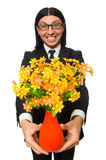 Handsome businessman with flower pot isolated on Royalty Free Stock Photography