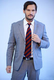 Handsome businessman in a grey suit Royalty Free Stock Photography