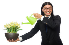 Handsome businessman holding spring flowers Royalty Free Stock Photo