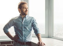 Handsome businessman in office Royalty Free Stock Image