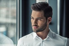 Handsome businessman in office Stock Photography