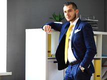 Handsome businessman in suit looking at camera Stock Photography