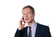 Handsome businessman talking on cell phone Royalty Free Stock Image