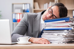 The handsome businessman working in the office Stock Images