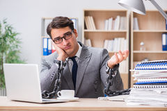 The handsome businessman working in the office Royalty Free Stock Photography