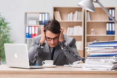 The handsome businessman working in the office Royalty Free Stock Photo