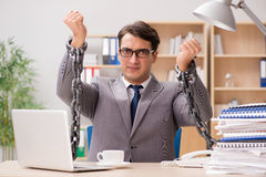 The handsome businessman working in the office Stock Photo