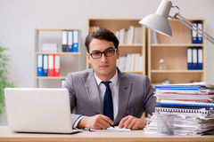 The handsome businessman working in the office Stock Image