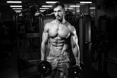 Caucasian fitness model in gym close up abs royalty free stock image