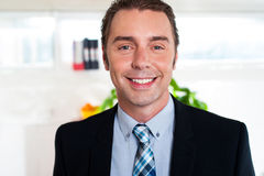 Handsome cheerful businessman royalty free stock photography