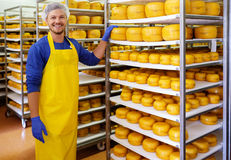Handsome cheesemaker is checking cheeses in his workshop storage. Stock Photography