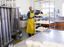 Handsome cheesemaker making curd cheese in his factory. Royalty Free Stock Image