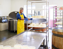 Handsome cheesemaker making curd cheese in his factory. Royalty Free Stock Photos