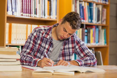 Handsome concentrated student studying his books Royalty Free Stock Images