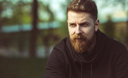 Handsome confident bearded man outdoor. Handsome confident bearded middle aged man outdoor. Masculine hipster guy portrait stock photos