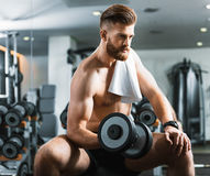 Handsome confident young man with weights Royalty Free Stock Photography