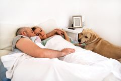 Handsome couple in bed sleeps together in association with dog. Handsome couple in bed sleeps together in association with their dog. A yellow labrador Stock Image