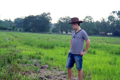 Handsome Cowboy Man at Rice Paddy Field Royalty Free Stock Image
