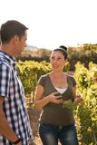 Handsome dark haired couple in the vineyard Stock Photos