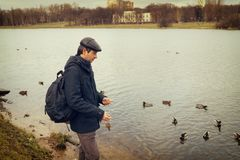 Handsome dark-haired middle-aged man in jacket, cap and backpack. Feeds ducks on pond in city park in late autumn. Authentic lifestyle moments stock photos