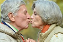 Handsome elderly couple Stock Photography