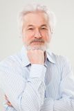 Handsome elderly man with beard Royalty Free Stock Photography