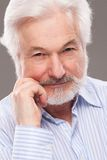 Handsome elderly man with grey beard Royalty Free Stock Images