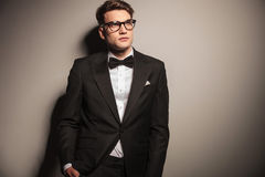 Handsome elegant business man looking up. Royalty Free Stock Photography