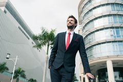 Handsome elegant businessman Stock Images