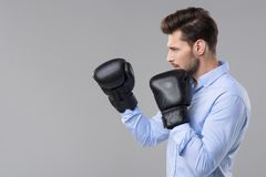 Handsome elegant man. With boxer gloves Stock Photos