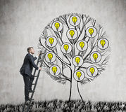 A handsome entrepreneur is climbing to the drawn tree with light bulbs. Royalty Free Stock Photos