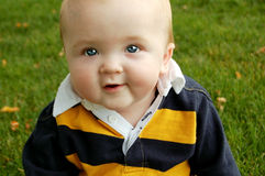 Handsome Fall Baby. Cute baby boy with an adorable expression sitting in grass Royalty Free Stock Images