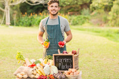 Handsome farmer holding peppers Stock Image