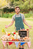 Handsome farmer standing at his stall Stock Images