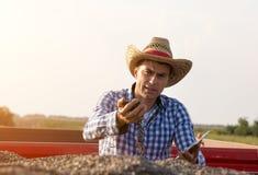 Farmer sitting in trailer full of sunflower seeds Royalty Free Stock Photos