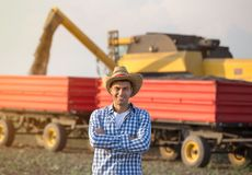 Farmer on field during harvest. Handsome farmer with straw standing with crossed arms in front of combine harvester and trailers during harvest royalty free stock photo