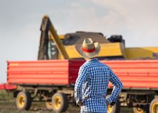 Farmer on field during harvest Royalty Free Stock Photos