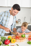 Handsome father teaching his son how to chop vegetables Royalty Free Stock Photography