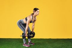 Handsome fit young woman exercise with dumbbells on the green grass over yellow background. Handsome fit young woman exercise with dumbbells on the green grass royalty free stock photos