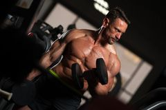 Muscular fitness model exercising with dumbbells stock image