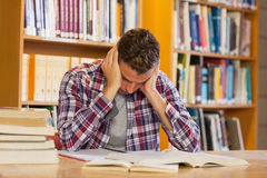 Handsome frustrated student studying his books Royalty Free Stock Photography