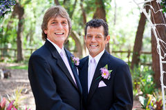 Handsome Gay Wedding Couple Stock Photography