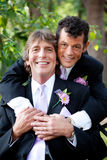Handsome Gay Couple  - Wedding Portrait Royalty Free Stock Photos