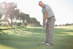 Handsome golfer putting ball on the green Royalty Free Stock Images