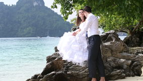 Handsome groom embraces brunette bride sitting on rock. And kisses her cheek at background of beach and tree stock video footage