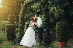 Handsome groom holds the bride`s hand near green flower archway Royalty Free Stock Images